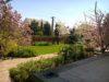 Remek kertészek adnak Önnek segítséget kertje szépítésében!
