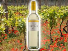 Remek áron vásárolhat Tokaji borokat.